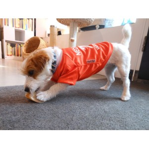 Van Der Dog voetbalshirt! - hond